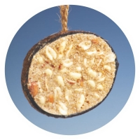 KN06 - Half coconut with peanuts and suet