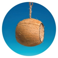 "KN17 - Coconut ""Drum"" filled with seeds and suet"