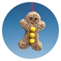 XG01 - Gingerbread Man with Sunflower kernels