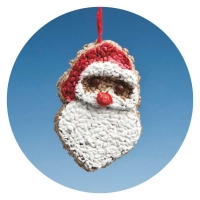 SA01 - Santa with Sunflower kernels